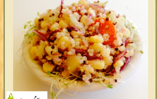 Meatless Monday- Festive Quinoa Salad